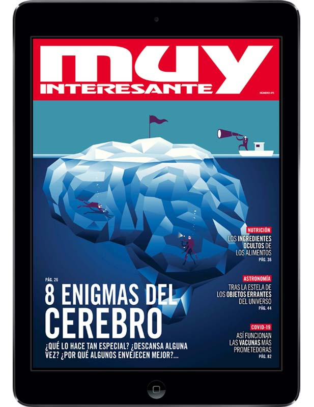 muydigital-suscripcion-12-blackfriday2020